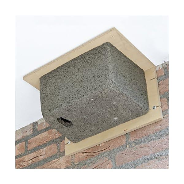 CJ Wildlife Woodstone Swift Bird Box and Nester
