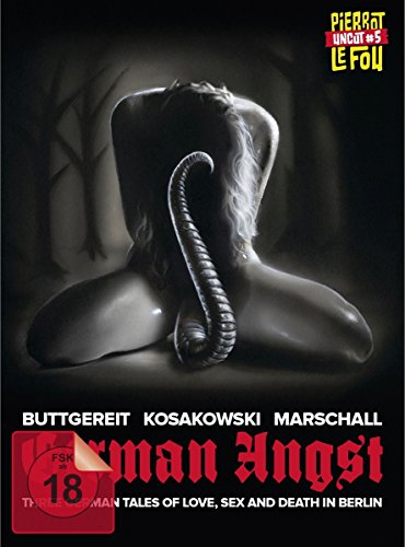 German Angst (uncut) - Limited Mediabook Edition (DVD & Blu-ray) [Limited Edition]