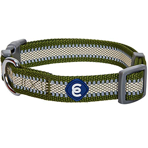 Blueberry Pet Essentials Reflective Back to Basics Adjustable Dog Collar, Dark Olive, Small, Neck 12