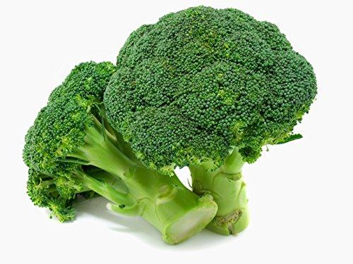 400 Graines de Brocolis Verts Calabrais jardins potager légumes méthode BIO