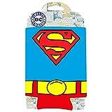 Silver Buffalo SP01033 DC Comics Superman Hugger Can, Multicolored, 4 x 5 inches