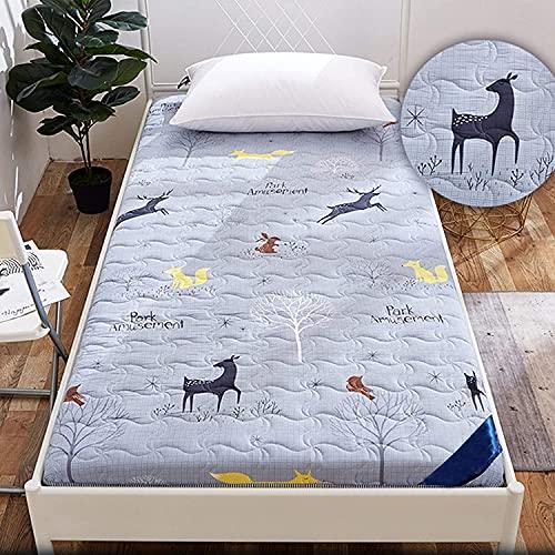 SBVDJ Colchoneta plegable enrollable para colchón de futón de piso, cojín de colchón para dormitorio de estudiante para niños, cojín de leeping Pad, C, 90 x 190 cm