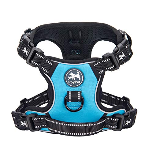 PoyPet 2019 Upgraded No Pull Dog Harness with 4 Snap Buckles, 3M Reflective with Front & Back 2 Leash Hooks and an Easy Control Handle [NO Need Go Over Dog's Head] (Blue,L)
