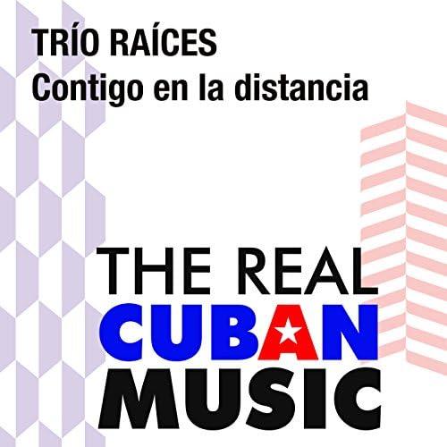Trio Raices