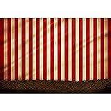 YongFoto 2,2x1,5m Vinilo Fondo de Fotografia Fondo Rayado Amarillo Rojo de la Pared Carpa de Circo...