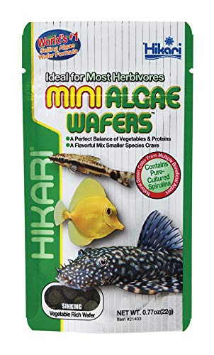 Hikari Mini gaufrettes d'algues - 22 g