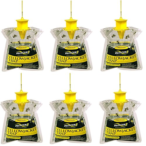 RESCUE! Disposable Summer Yellowjacket Trap, Outdoor, Non-Toxic - Eastern Time Zones(Pack of 6)