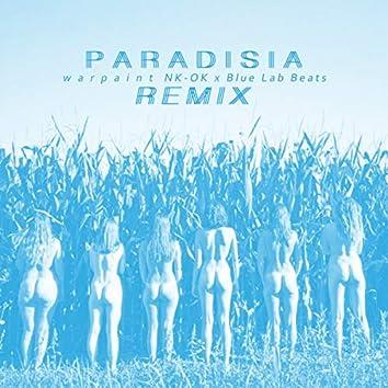 Warpaint (NK-OK x Blue Lab Beats Remix)