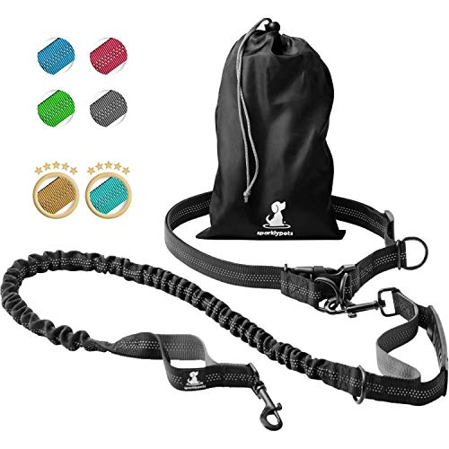 Best Leash for Running With Your Dog