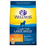 Wellness Natural Pet Food  Complete Health Natural Dry Large Breed Puppy Food, Chicken, Salmon & Rice, 30-Pound Bag