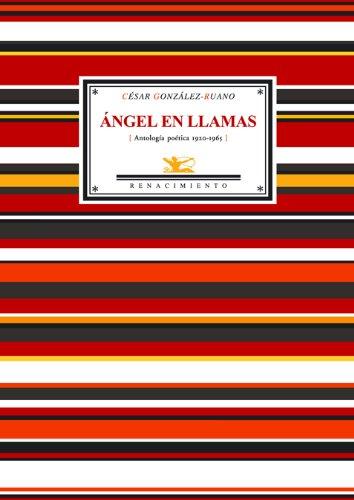 Angel En Llamas (Antologia Poet (Antologías)
