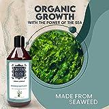 Zoom IMG-2 garten gl ck fertilizzante piante