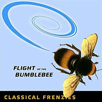 Flight of the Bumblebee - Rock Band Network version