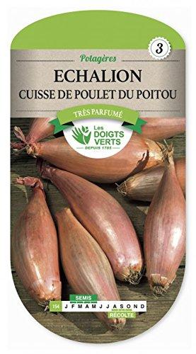 Les doigts verts Semence Echalion Cuisse de Poulet du Poitou