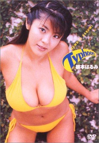 根本はるみ : Typhoon [DVD]