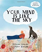 Your Mind is Like the Sky: A First Book of Mindfullness