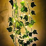 Fangteke Künstliche Efeu Girlande Künstliche Pflanzen Führte Lichter Kette Grünes Blatt Rebe Batteriebetriebene Lichterketten Lichter für Haus Garten Hochzeit Wand Dekoration 2M 20 Led