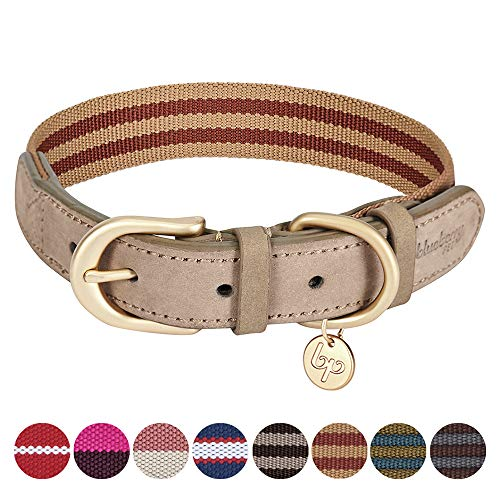 Blueberry Pet Klassisches Gestreiftes Basis Echtleder Hundehalsband in Rot und Kupferbraun, S, Hals 30,5cm-38cm