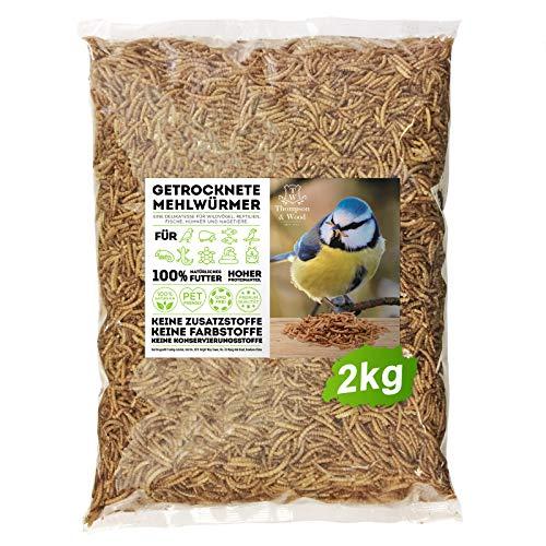 Thompson&Wood Mehlwürmer getrocknet 2kg, optimales Zusatz Futter für Reptilien, Fische, Vögel & Co.