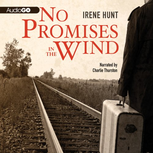 No Promises in the Wind audiobook cover art