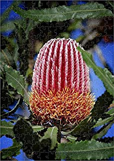Media Storehouse 252 Piece Puzzle of Firewood banksia (Banksia menziesii) (18958518)