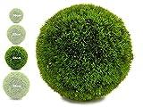 TIENDA EURASIA® Bola Artificial de Decoracion - Seto Artificial Decorativo - Ideales...