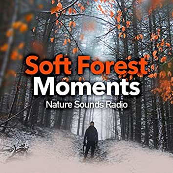 Soft Forest Moments