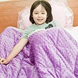Calming Weighted Blanket for Kids 10lbs 38'X62' for 80-110lbs Kids Twin Size | Plush Minky One Piece...