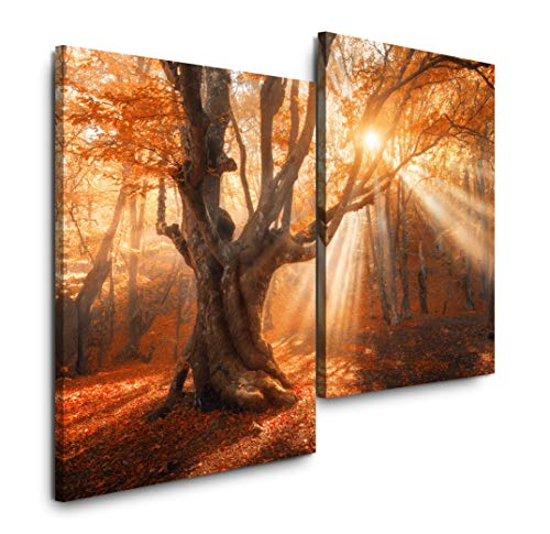 Sinus Art Magischer Alter Baum 120x80cm 2 Kunstdrucke je 70x60cm Kunstdruck modern Wandbilder XXL Wanddekoration Design Wand Bild