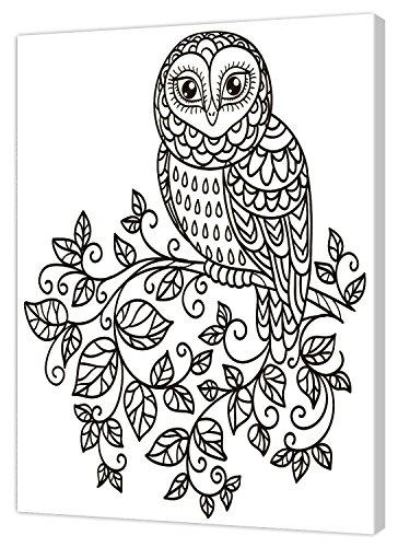Pintcolor 7809.0 châssis avec Toile imprimée à colorier, Bois de Sapin, Blanc/Noir, 40 x 50 x 3,5 cm