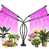 FiBiSonic Pflanzenlampe LED 40W 80 LEDs Vollspektrum,...
