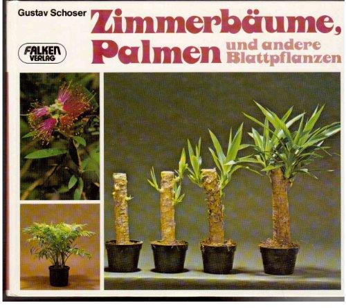 Zimmerbäume, Palmen und andere Blattpflanzen.