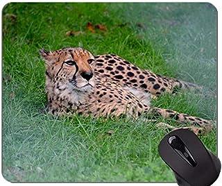 comprar comparacion Alfombrilla de ratón con Estampado de Piel de Tigre Animal, Alfombrilla de ratón con Bordes cosidos