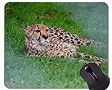 Alfombrilla de ratón con Estampado de Piel de Tigre Animal, Alfombrilla de ratón con Bordes cosidos