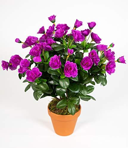 Seidenblumen Roß Azalee 40cm Purple im Topf ZF Kunstpflanzen Kunstblumen künstliche Blumen