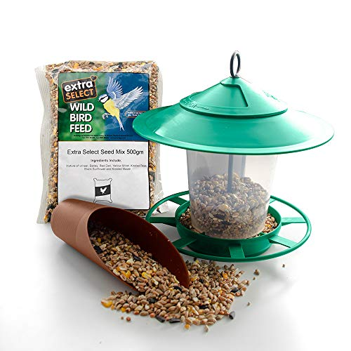Etree Bird Feeder Gift Set including Hanging Lantern Feeder, Seed Scoop and 500g of Extra Select Wild Bird Seed