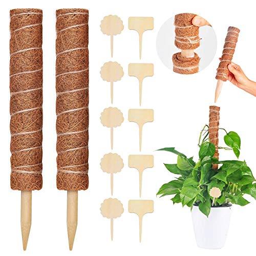 Sunshine smile Pflanzstab Kokos, 2Pcs Kokosstab für Pflanzen,Blumenstab Kokosstab,Verlängerbar Rankstab Natürlicher Kokosfaser Stützpfahl,Garten Kletterpflanze,mit 10 Holzetiketten für Pflanzenname