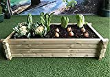 Garden Beds Review and Comparison