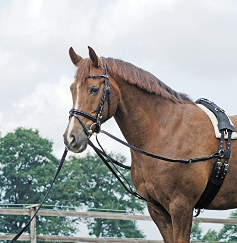 BUSSE Dreieckszügel BASIC, Pony, schwarz/NP