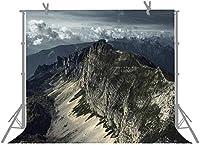HiYash 10x8ft 山の写真の背景写真スタジオの小道具自然の風景の背景誕生日パーティー赤ちゃんの誕生日の装飾バナー家の装飾と美しい記憶記録ビニール素材