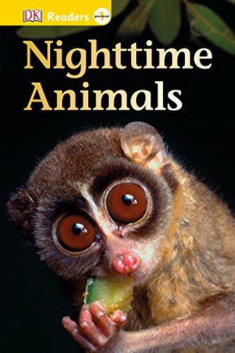 DK Readers L0: Nighttime Animals (DK Readers Pre-Level 1)の詳細を見る