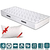 EVERGREENWEB Materasso Singolo 80x190 in Waterfoam Alto 20 cm con Cuscino Memory Foam Grat...