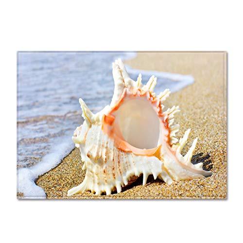 Oukeep Alfombra De Playa De Concha De Paisaje Costero Las Alfombrillas Impresas con Patrones Realistas No Arrojan Pelo Las Almohadillas Lavables para Los Pies Son Frescas Y Simples