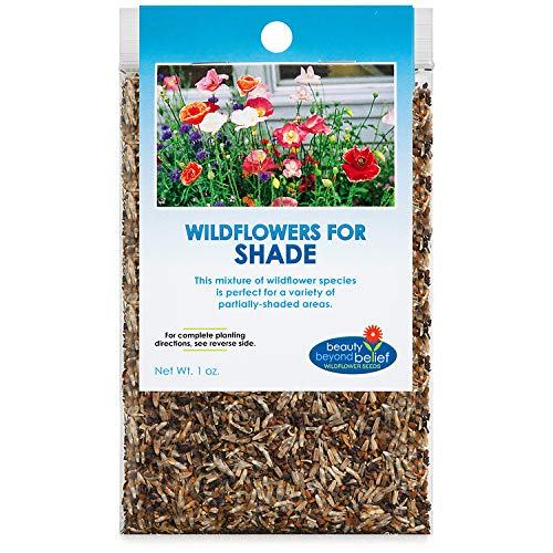 Partial Shade Wildflower Seeds Bulk - Open-Pollinated Wildflower Seed Mix...