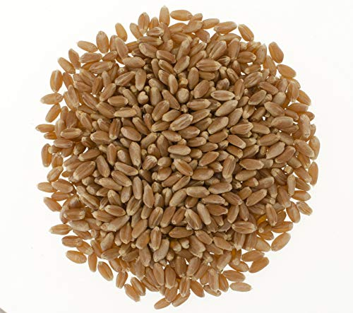 Hard Red Winter Wheat Berries • Non-GMO Project Verified • 25 LBS • 100% Non-Irradiated • Certified Kosher Parve • USA Grown • Field Traced • Poly Bag