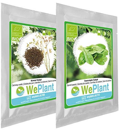 BIO Carvi & Oseille - Graines de plantes aromatiques/Intérieur & Extérieur