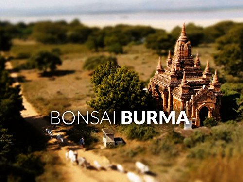 Bonsai Burma - Mini Myanmar