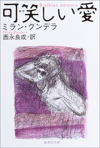 可笑しい愛 (集英社文庫)