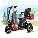 Joyfitness Tricycle électrique Pliant Adulte âgé 48V Mini Batterie de Voiture Trois réglable,48V20AH