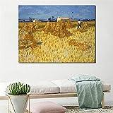 WJY Ernte in der Provence Van Gogh Leinwand Poster Drucke Wandkunst Gemälde Öl Dekoratives Bild Moderne Wohnkultur HD 40x50cm Kein Rahmen